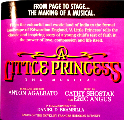 a little princess flyer